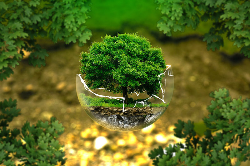 Sustentabilidade União Fundações